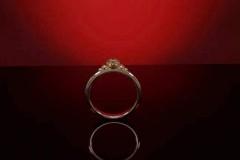 ring-02-02